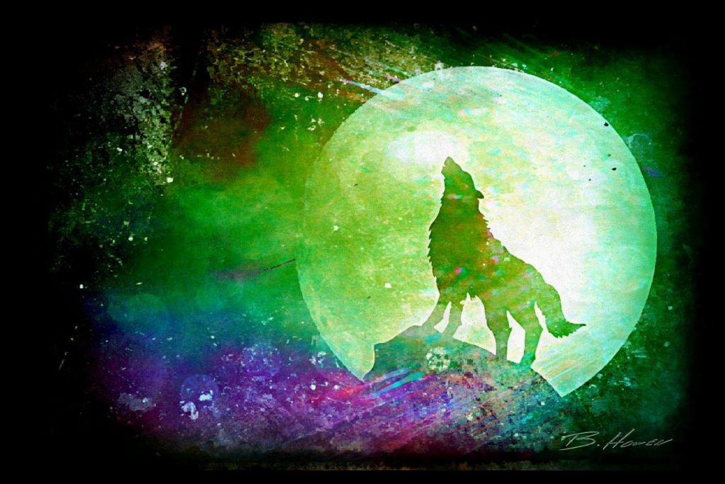 Wolf 0315  - Prints available, contact us for details.